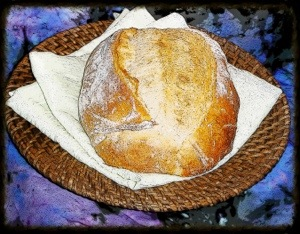Daily Bread  (from morgue file.com)